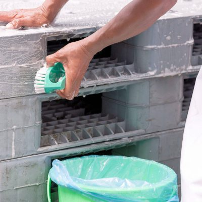 Workers scrubbing clean stackable plastic pallets
